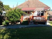 Accommodation Pleșcoi, Marthi Guesthouse