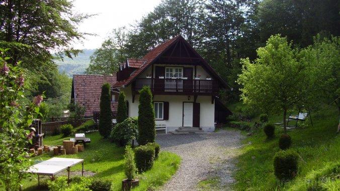 Banucu Lívia Guesthouse Satu Mare