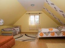 Accommodation Poroszló, Zsófia Guesthouse