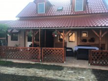 Apartament județul Jász-Nagykun-Szolnok, Apartament Darwin Classic