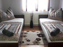 Guesthouse Gergelyiugornya, Kaland Guesthouse