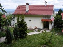 Casă de oaspeți Biborțeni, Casa de oaspeți Szécsenyi