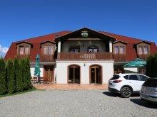 Accommodation Vlăhița, Palace Guesthouse