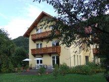 Accommodation Băile Balvanyos, Foenix Guesthouse