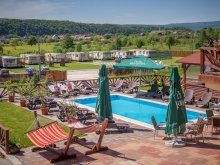 Accommodation Dumbrava (Livezile), Németh Camping
