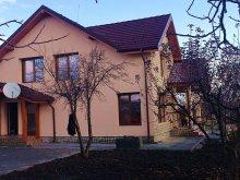 Panzió Ghilăvești, Casa Ioana Panzió