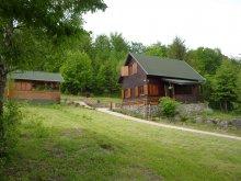 Accommodation Barajul Zetea, Spierer Piroska Guesthouse