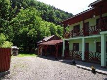 Accommodation Brădețelu, Niko Guesthouse