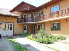 Accommodation Cârțișoara, Nyikó Parti Guesthouse