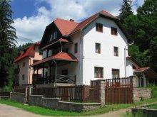 Villa Băile Homorod, Villa Atriolum