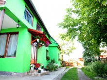 Accommodation Piatra Fântânele, Csergő Ildikó Guesthouse