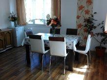 Accommodation Praid, Aranyvesszo Guesthouse