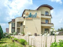 Accommodation Grabicina de Jos, AselTur B&B