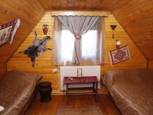 Accommodation Siriu, Casa Vlăduț Guesthouse