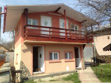 Accommodation Râmnicu Vâlcea, Alex Villa