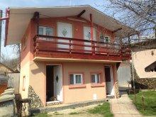 Accommodation Ungureni (Valea Iașului), Alex Villa