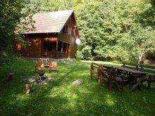 Accommodation Capalnita (Căpâlnița), Gyerő Attila II. Guesthouse