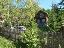 Accommodation Zizin, Kassay Ferenc Guesthouse