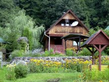 Accommodation Băile Homorod, Kerestély Katalin Guesthouse