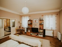 Cazare Dealu Armanului, Casa de oaspeți Bartalis