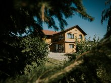 Casă de oaspeți Ținutul Secuiesc, Casa de oaspeți Erika