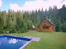 Accommodation Piatra Fântânele, Pal Guesthouse