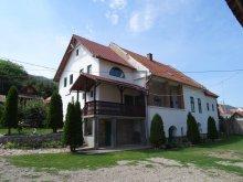 Guesthouse Huzărești, Panoráma Pension