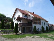Szállás Járabánya (Băișoara), Panoráma Panzió