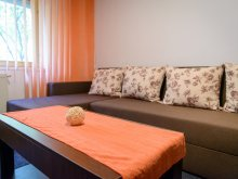 Pachet Sinaia, Apartament Luceafărul 2