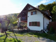 Accommodation Racoș, Nitu Enikõ Guesthouse