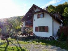 Chalet Valea Mică, Nitu Enikõ Guesthouse