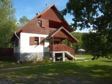 Accommodation Barajul Zetea, Simon Csaba Guesthouse
