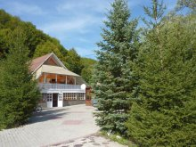 New Year's Eve Package Smile Aquapark Brașov, Simon Csilla 1. Guesthouse
