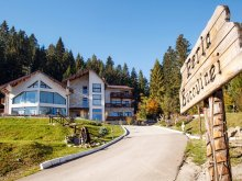 Accommodation Bukovina, Perla Bucovinei Guesthouse