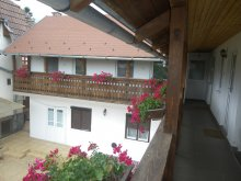 Accommodation Budacu de Jos, Katalin Guesthouse