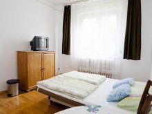 Accommodation Hungary, Dorottya Hostel 1