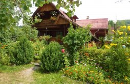 Accommodation Barajul Zetea, Szőcs Ilona Guesthouse