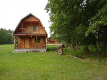 Accommodation Ciumani Ski Slope, Sztojanov Miklós I-III. Guesthouse