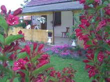 Accommodation Kalocsa, Holdfeny Holiday Home