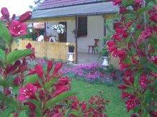 Accommodation Ruzsa, Holdfeny Holiday Home