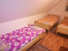 Accommodation Ciceu, Roth Guesthouse