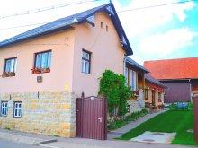 Vendégház Sărsig, Park Vendégház