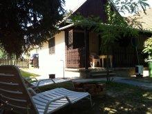Casă de vacanță Tiszavárkony, Casa de vacanță Pelikán