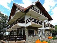 Accommodation Întorsura Buzăului, Iulia's Guesthouse