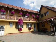 Accommodation Ocna de Jos, Dorina Guesthouse