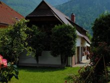 Accommodation Poieni (Parincea), Legendary Little House