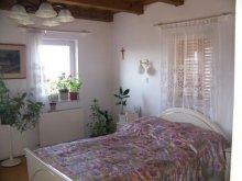 Accommodation Lake Balaton, Szűcs Apartment