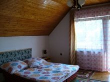 Accommodation Tihany, Knézich Guesthouse