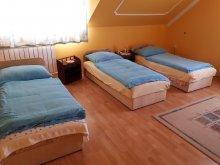Accommodation Abda, Kincsem Guesthouse
