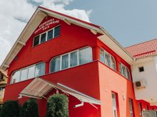 Accommodation Viile Satu Mare, Dealul Florilor B&B